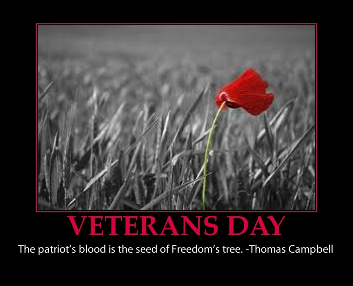 happy veterans day truth lies and in between