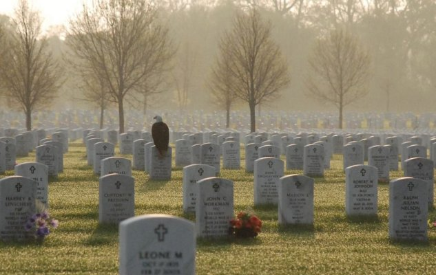 Eagle on cemetary stone